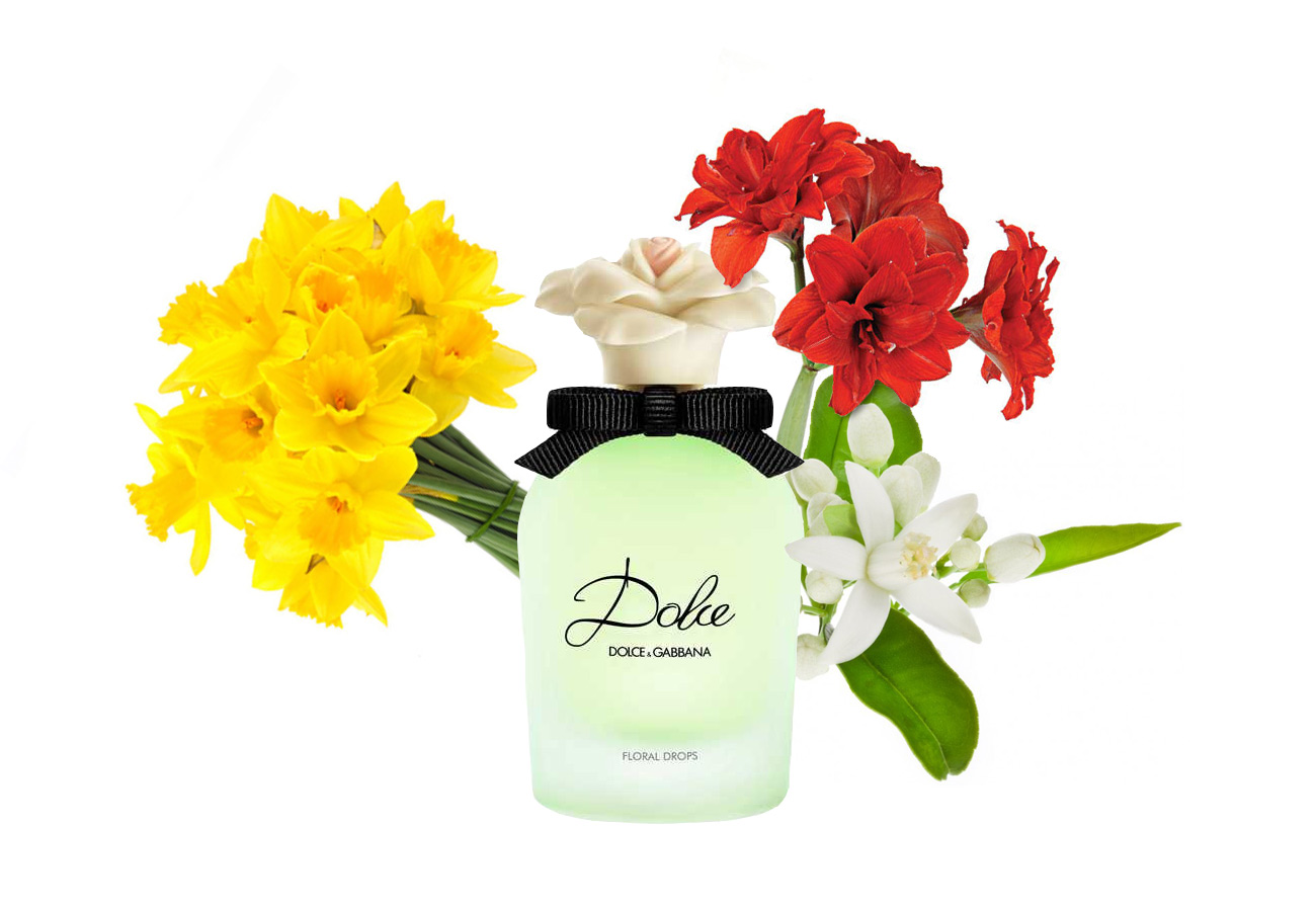 Dolce-&-Gabbana-Dolce-Floral-Drops-notes